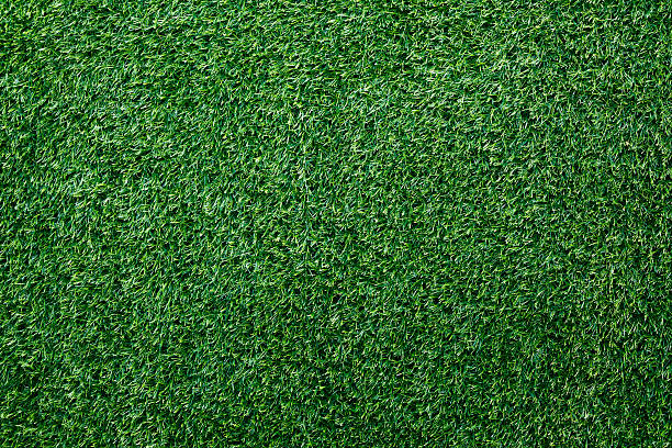Green grass background:スマホ壁紙(壁紙.com)