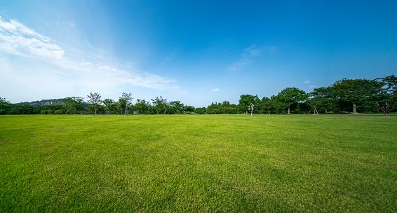 Grass「Green grassland and blue sky」:スマホ壁紙(15)