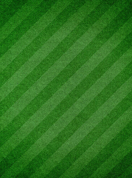 Green grass textured background with stripe:スマホ壁紙(壁紙.com)