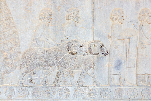 Iranian Culture「Bas-Relief of the Cilician Delegation (Apadana Stairs) in Persepolis」:スマホ壁紙(18)