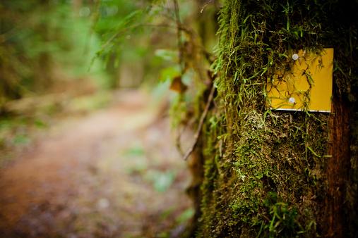 Hiking「Trail markers」:スマホ壁紙(4)
