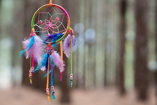 Indigenous North American Culture「Multi-colored Dreamcatcher hanging in the woods」:スマホ壁紙(11)