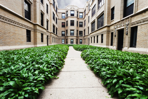 20th Century Style「Apartment Buildings with Hostas in Rogers Park, Chicago」:スマホ壁紙(4)