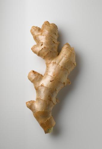 Ginger - Spice「Ginger root on white」:スマホ壁紙(7)