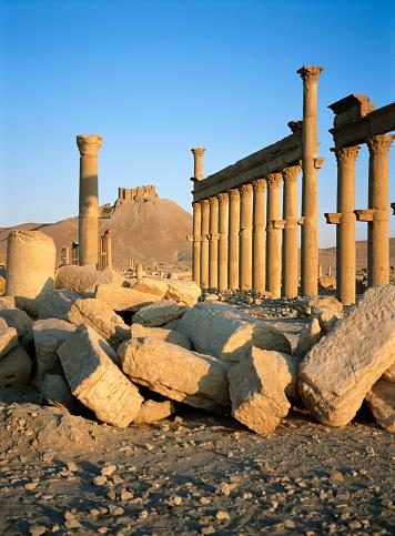 2002「Syria, Palmyra, ruins of Cardo Maximus, sunrise」:スマホ壁紙(10)