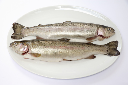 ガラス「Two fresh trout on plate, close-up」:スマホ壁紙(9)