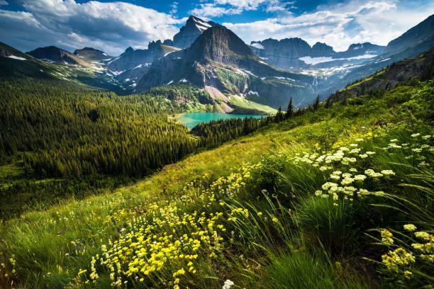 Grinnell Glacier Trail:スマホ壁紙(壁紙.com)