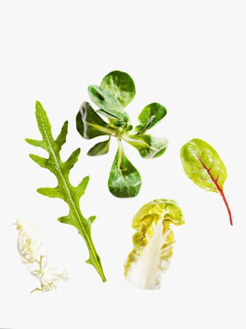 Arugula「Variety of green leaf lettuce」:スマホ壁紙(16)