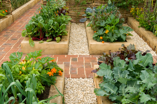 Paving Stone「Raised beds in potager garden」:スマホ壁紙(12)