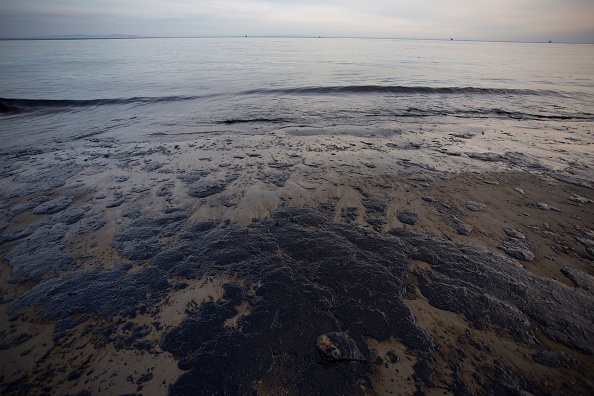 Beach「Ruptured Pipeline Spills Oil Along Santa Barbara Coast」:写真・画像(0)[壁紙.com]