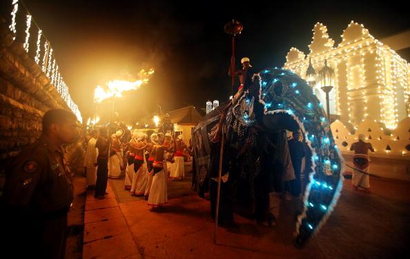 Sri Lanka「Religious Festivals In Sri Lanka Draw Large Crowds」:写真・画像(5)[壁紙.com]