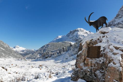 Lech Valley「Austria, Vorarlberg, View of Lechquellengebirge mountain and Zugertal valley」:スマホ壁紙(11)