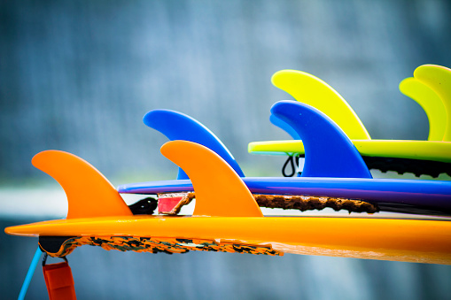 Aquatic Sport「Colorful surfboards.」:スマホ壁紙(11)