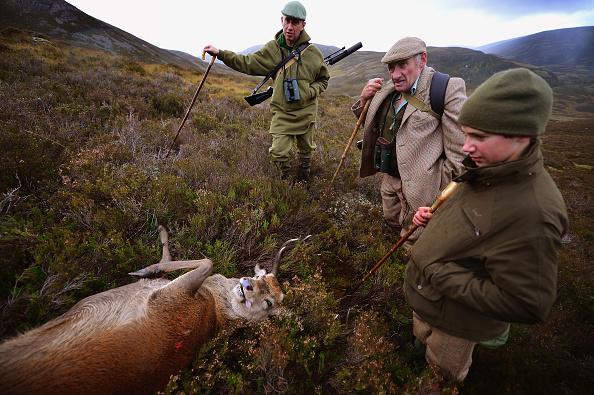 Best shot「Peter Fraser Practices Traditional Deer Stalking Methods In The Scottish Highlands」:写真・画像(6)[壁紙.com]