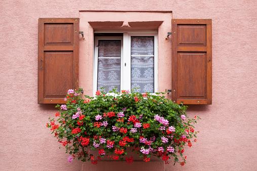 Tilt「France, Alsace, Eguisheim, Window with window box and geraniums」:スマホ壁紙(3)