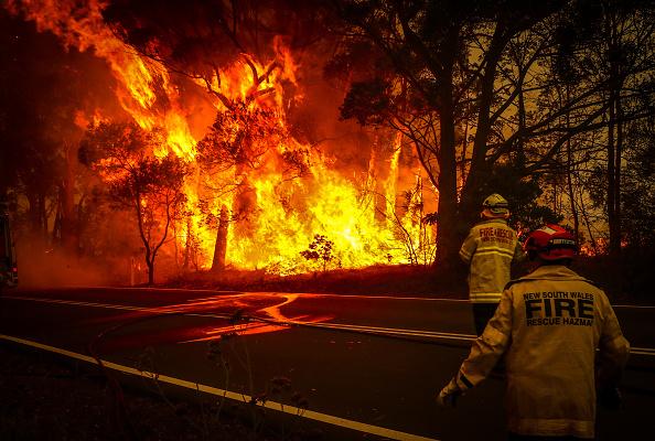 オーストラリア「Gospers Mountain Fire At Emergency Level As Heatwave Continues」:写真・画像(3)[壁紙.com]