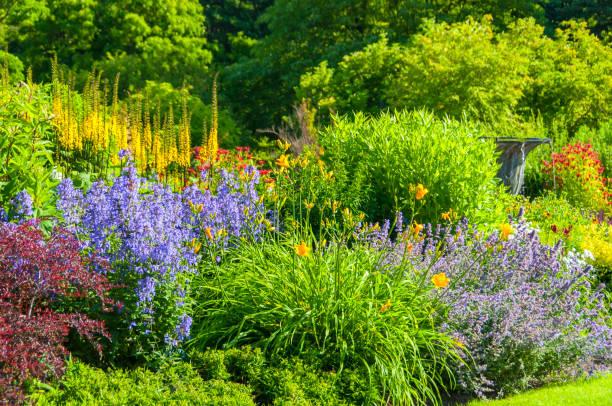 Colorful garden:スマホ壁紙(壁紙.com)