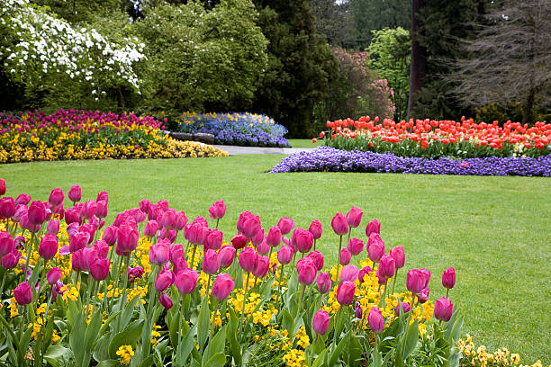 Colorful garden landscape and grassy lawn:スマホ壁紙(壁紙.com)