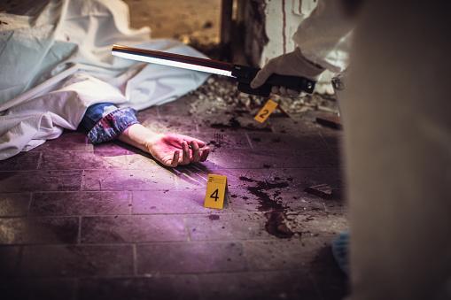 雪「Forensics looking for evidence」:スマホ壁紙(0)