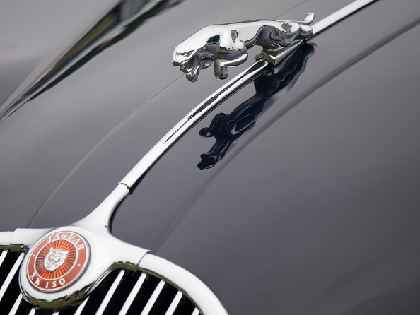 キャラクター「Leaping cat mascot on Jaguar XK150」:写真・画像(1)[壁紙.com]