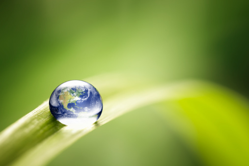 Fragility「World in a drop - Nature Environment Green Water Earth」:スマホ壁紙(3)