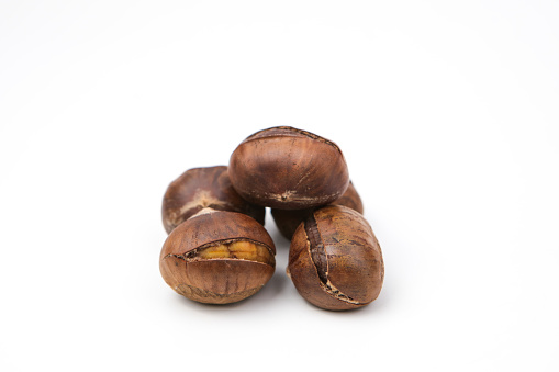 chestnut「Chinese chestnut」:スマホ壁紙(18)