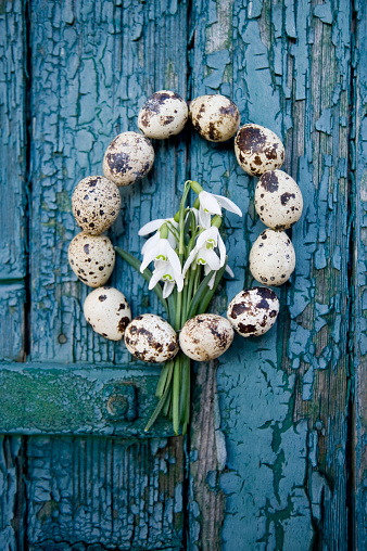Quail Egg「Wreath of quail eggs and snowdrops on an old wooden door」:スマホ壁紙(18)