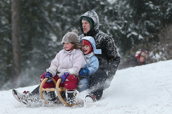 Sled「Heavy Snowfall Hits Northeastern Germany」:写真・画像(13)[壁紙.com]