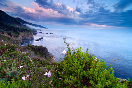 Big Sur「Looking south down the Big Sur coastline at sunset with wildflowers blooming, California.」:スマホ壁紙(14)