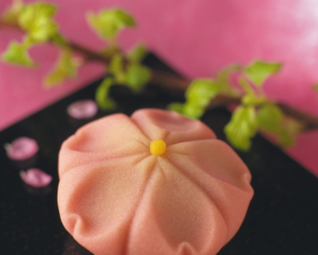 Wagashi「Wagashi, Japanese sweets on plate, high angle view, Differential Focus, Close Up」:スマホ壁紙(5)