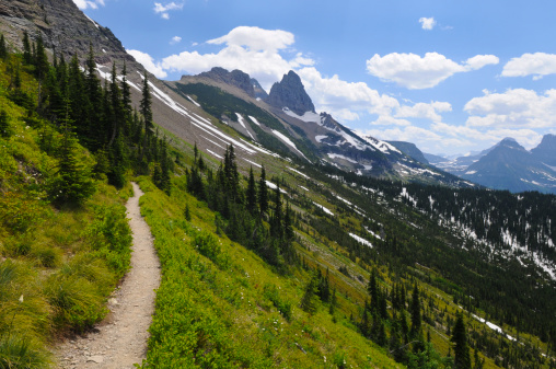 Montana - Western USA「Scenic Hiking Trail in Glacier National Park」:スマホ壁紙(11)