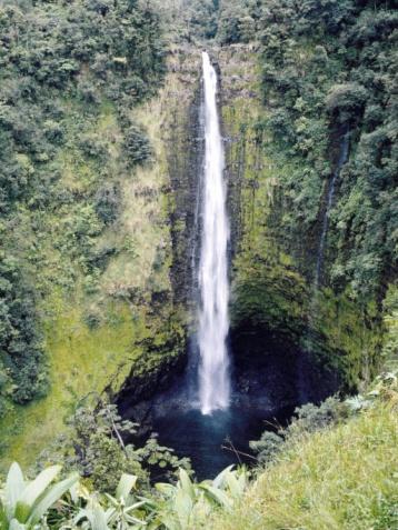 Akaka Falls「24102318」:スマホ壁紙(19)