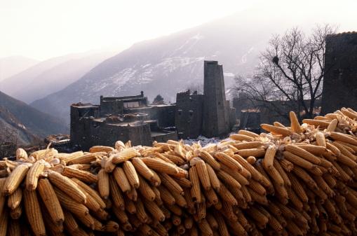 Szechuan Cuisine「QIANG TRIBE VILLAGE, SICHUAN PROVINCE, PEOPLES REPUBLIC OF CHINA」:スマホ壁紙(18)