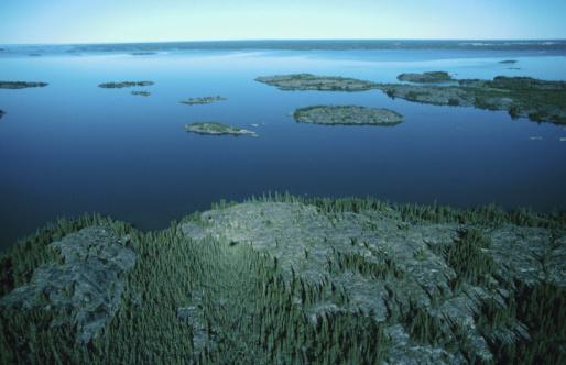 Boreal Forest「23935844」:スマホ壁紙(17)