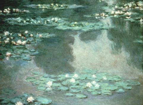 Water Lily「24117200」:スマホ壁紙(8)