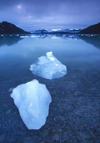 Glacier Bay National Park「ICEBERGS IN GLACIER BAY, ALASKA」:スマホ壁紙(9)