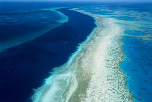 Reef「AERIAL VIEW OF A BARRIER REEF IN QUEENSLAND, AUSTRALIA」:スマホ壁紙(13)