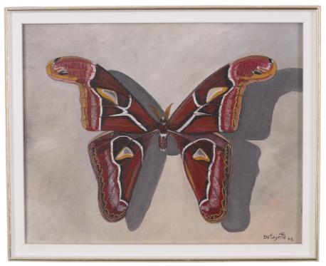 昆虫「23598850」:スマホ壁紙(10)