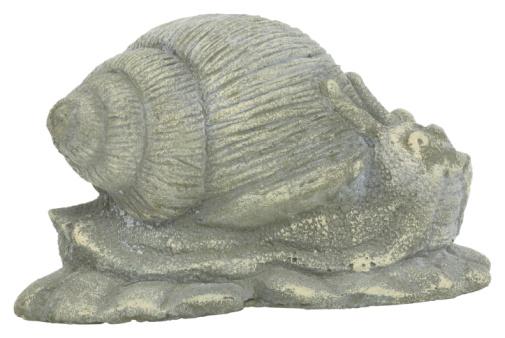 snails「23594706」:スマホ壁紙(5)