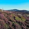 Clwydian Range壁紙の画像(壁紙.com)