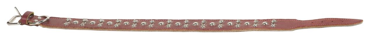Belt「23577601」:スマホ壁紙(2)