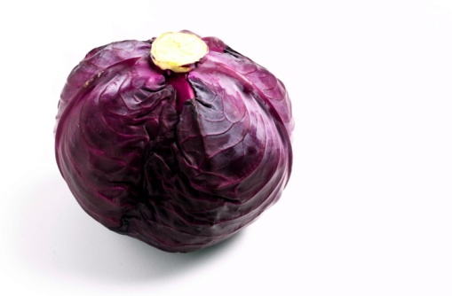 Red Cabbage「24115628」:スマホ壁紙(11)
