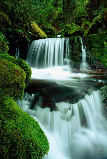 Willamette National Forest「WHITEWATER CREEK FALLS, OREGON, USA (LONG EXPOSURE)」:スマホ壁紙(13)
