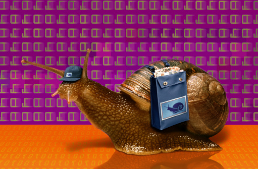 snails「SNAIL WITH EMAIL BACKGROUND」:スマホ壁紙(14)