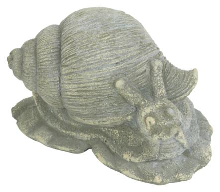 snails「23594707」:スマホ壁紙(2)