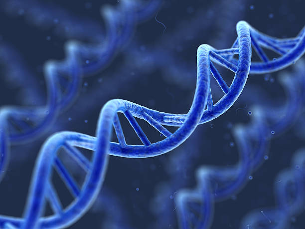 DNA:スマホ壁紙(壁紙.com)