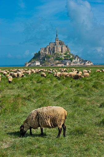 Abbey - Monastery「Mont-Saint-Michel, listed as world heritage by UNESCO」:スマホ壁紙(11)