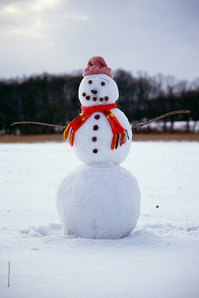 Snowman with hat and scarf:スマホ壁紙(壁紙.com)