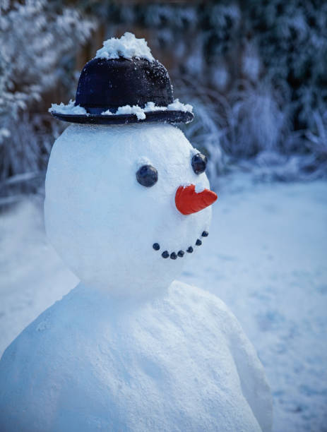 snowman with carrot nose and hat:スマホ壁紙(壁紙.com)