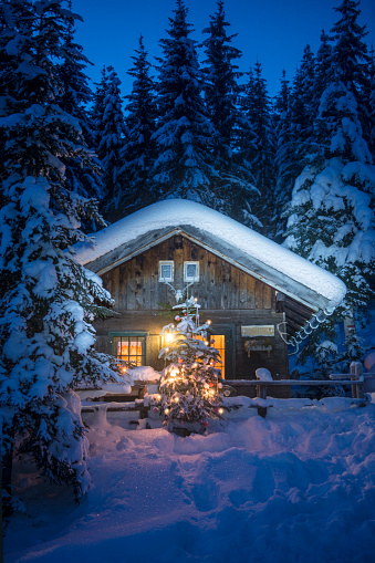 Atmosphere「Austria, Altenmarkt-Zauchensee, Christmas tree at illuminated wooden house in snow at night」:スマホ壁紙(7)